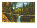 Capilano Bridge, Vancouver, British Columbia Posters