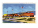 Agricultural Building, Chicago World's Fair Poster