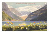 Poppies, Lake Louise, Canadian Rockies Poster