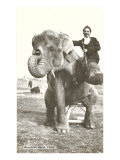 Circus Elephant and Trainer, 1915 Posters