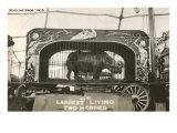 Rhino in Circus Wagon, 1915 Print