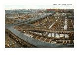 Union Stockyards, Chicago, Illinois Poster