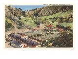 Bird Park, Catalina, California Posters