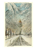 Winter, State Capitol, Denver, Colorado Posters