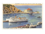 Steamers at Pier, Casino, Catalina, California Posters