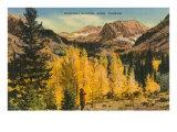 Montezuma Mountain, Aspen, Colorado Posters