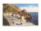 Airport and Orilla Jardin, Catalina, California Print