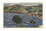 Isthmus Harbor, Catalina, California Posters