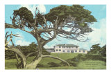 Cypress Point Golf Club, Pebble Beach, California Print