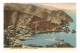 Avalon Bay, Catalina, California Posters