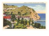 Hotel St. Catherine, Catalina, California Posters