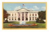 White House, Washington D.C. Posters