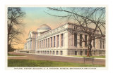Natural History Building, Washington D.C. Prints