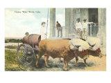 Country Water Works, Bullocks, Cuba Posters