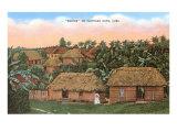 Bohios, Cuban Thatched Huts Poster