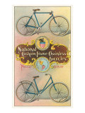 National Cushion Frame Chainless Bicycle Poster