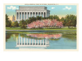 Lincoln Memorial, Cherry Blossoms, Washington D.C. Posters