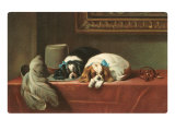 King Charles Spaniels Lmina gicle