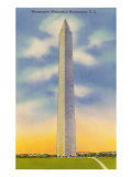 Washington Monument, Washington D.C. Posters
