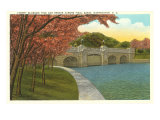 Cherry Blossoms, Tidal Basin, Washington D.C. Print