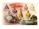 French Perfume Language Posters