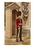 Guard at Buckingham Palace, London, England Print