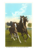 Three Running Horses Poster
