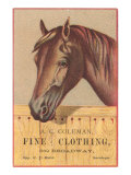 Advertisement with Horse Print