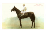 Rock Sand, Derby Winner, 1903 Posters