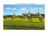 Polo Game Posters