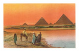 Pyramids from across the Nile, Egypt Posters