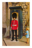 Buckingham Palace Guard, London, England Posters