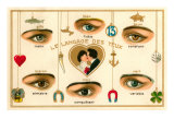 French Language of the Eyes Print