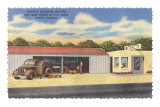 Fruit Stands, Largo, Florida Posters