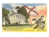 State Capitol, Mocking Bird, Flag, Florida Posters
