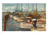 Fischerboote in Miami Beach (Florida) Poster