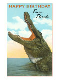 Happy Birthday from Florida, Alligator Posters