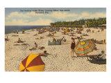 Beach, Sarasota, Florida Poster