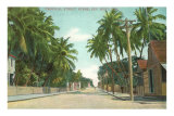 Straßenbild, Key West, Florida Poster