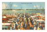Fishing Docks, Miami, Florida Posters