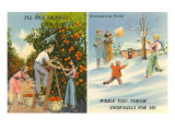 Oranges Versus Snowballs, Florida Print