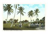 Golf Course, Palm Tees, Palm Beach, Florida Poster