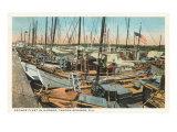 Sponge Fleet, Tarpon Springs, Florida Poster