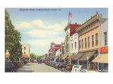 Magnolia Street, Ocala, Florida Poster
