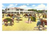 Beach, Sarasota, Florida Posters