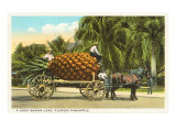 Giant Pineapple on Wagon, Florida Print