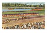 Hialeah Race Track, Florida Plakaty