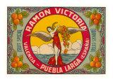 Ramon Victoria Oranges Posters