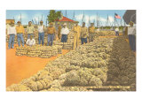 Sponge Exchange, Tarpon Springs, Florida Print
