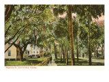 Magnolia Street, Daytona, Florida Print